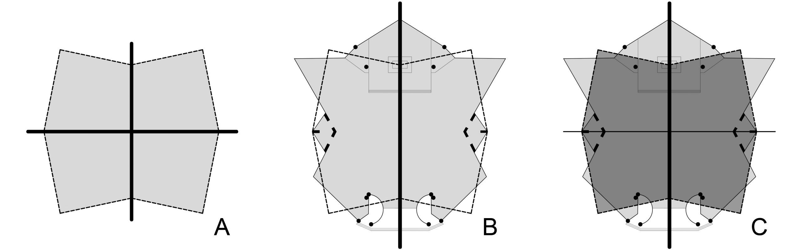 C:UsersalbertoDesktopprove rhinoRidisegno pianta copertura